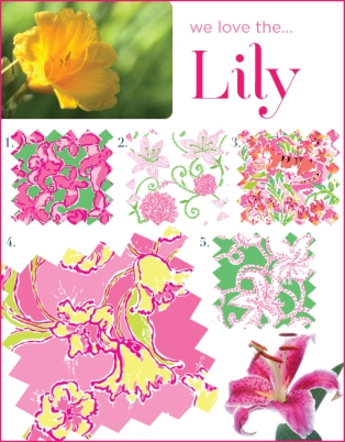 Day Lilly Inspirations from A COLORFUL BLOG